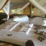 single and double bed Cottage accommodation kabwoya wildlife reserve uganda
